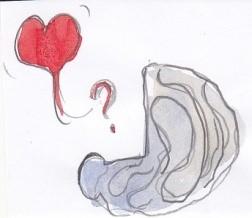 hart hersenen Marlou